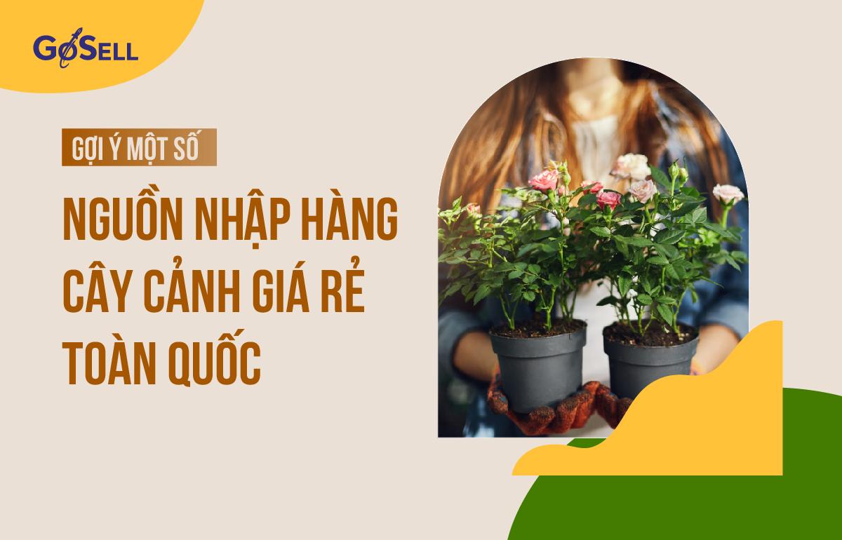nguon_nhap_hang_cay_canh