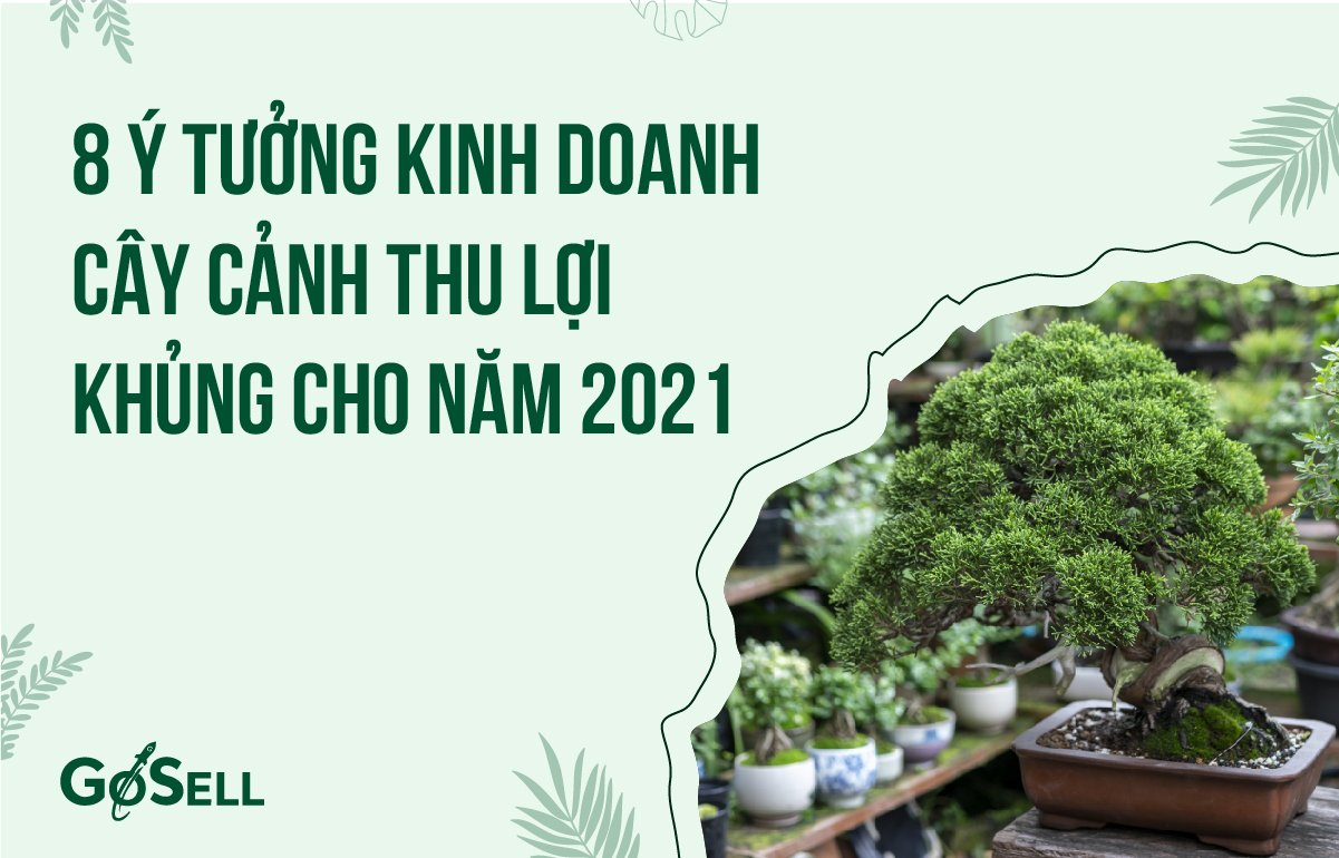 y_tuong_kinh_doanh_cay_canh