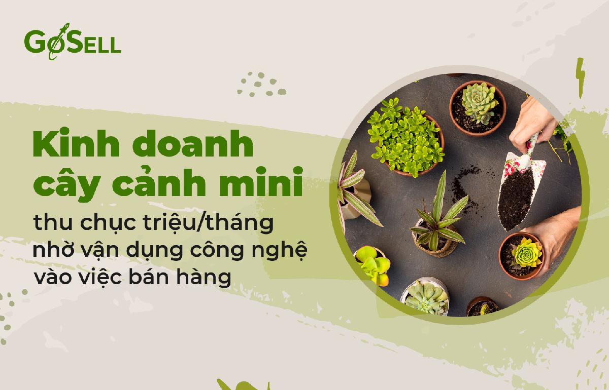 kinh_doanh_cay_canh_mini