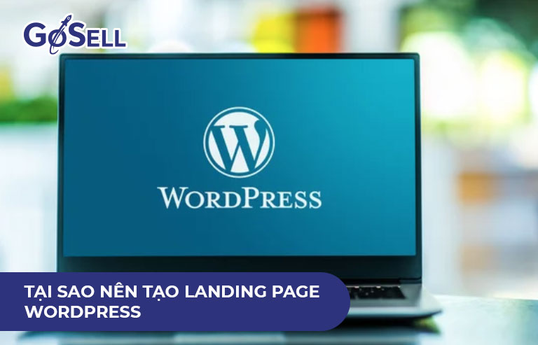 Tạo landing page wordpress 2